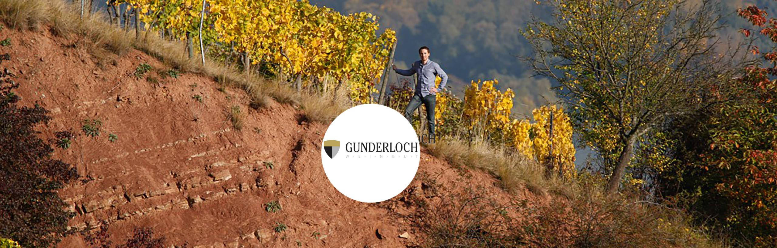 Weingut Gunderloch Castello del Gusto