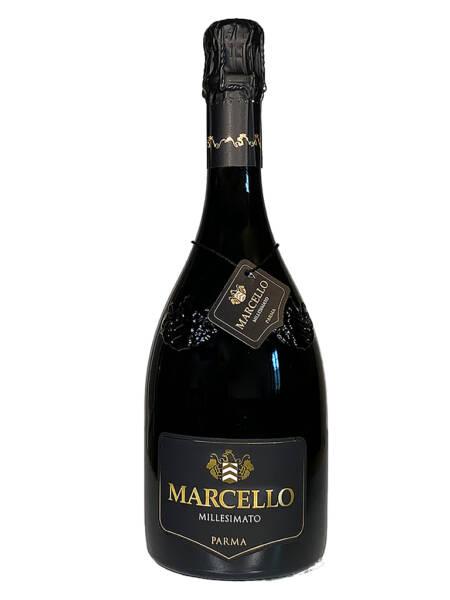 Ariola Marcello Lambrusco Millesimato